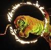 Цирки в Рублево